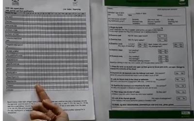 Registrazione delle cause della mortalità degli agnelli attraverso il monitoraggio e l'uso di un quaderno di stalla apposito