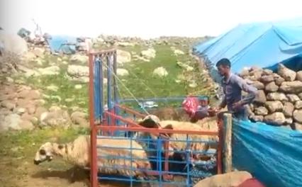 Door opening system in mountain farmers