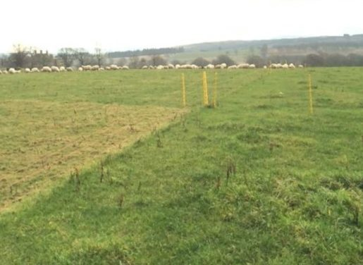A simple approach to rotational grazing
