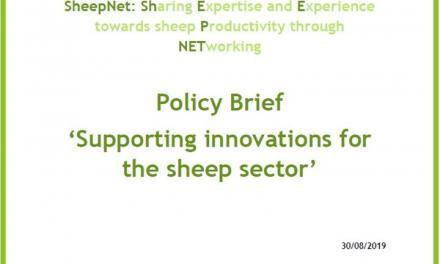Resumen Políticas – Apoyo a la innovación en el sector ovino