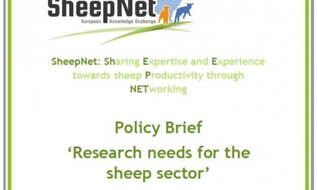 Politika özeti- Koyunculuk sektörü için araştırma ihtiyacı