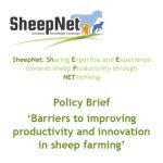 Resumen Políticas – Barreras para mejorar productividad e innovación en ganaderia ovina
