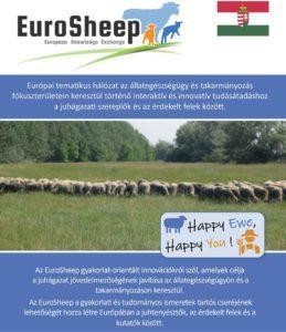 Eurosheep Network Flyer - Hungarian
