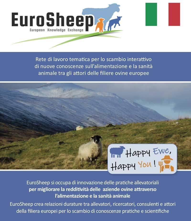 Eurosheep Network Flyer - Italian
