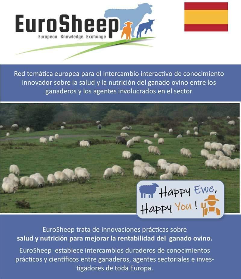 Eurosheep Network Flyer - Spanish