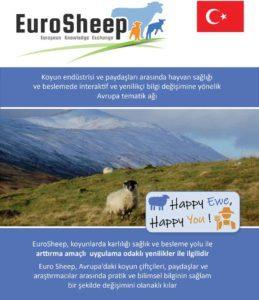 Eurosheep Network Flyer - Turkey